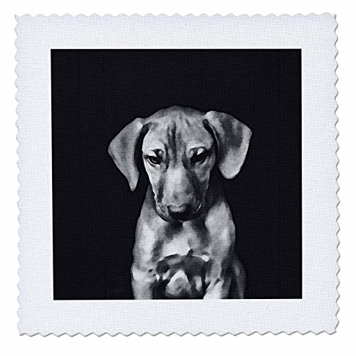 3dRose Andrea Haase Animals Illustration - Cute Dachshund Puppy Black and White Watercolor Art - 22x22 inch quilt square (qs_274798_9) by 3dRose