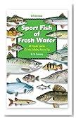 Florida Sportsman Sport Fish of Fresh Water Book