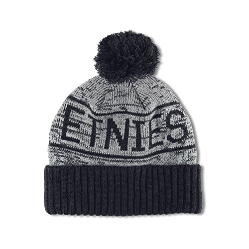 Etnies Mens Liniar Beanie One Size Blue/Heather - Etnies Mens Beanie