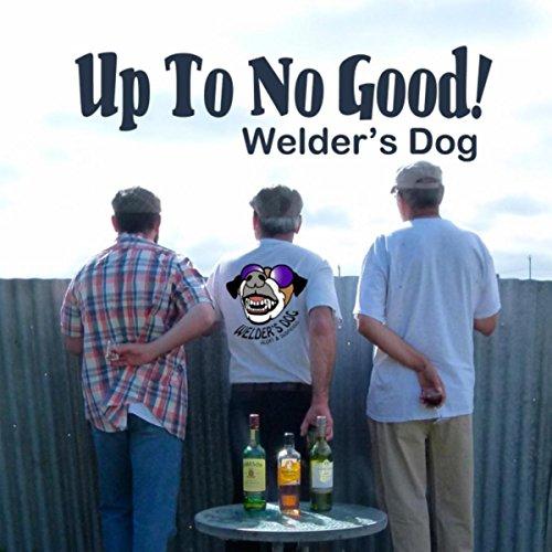 Buy welders for the money