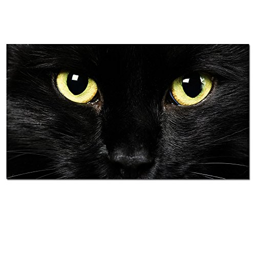 ,Abstract Black Cat Canvas Prints With Frame,Attractive Cat Face )