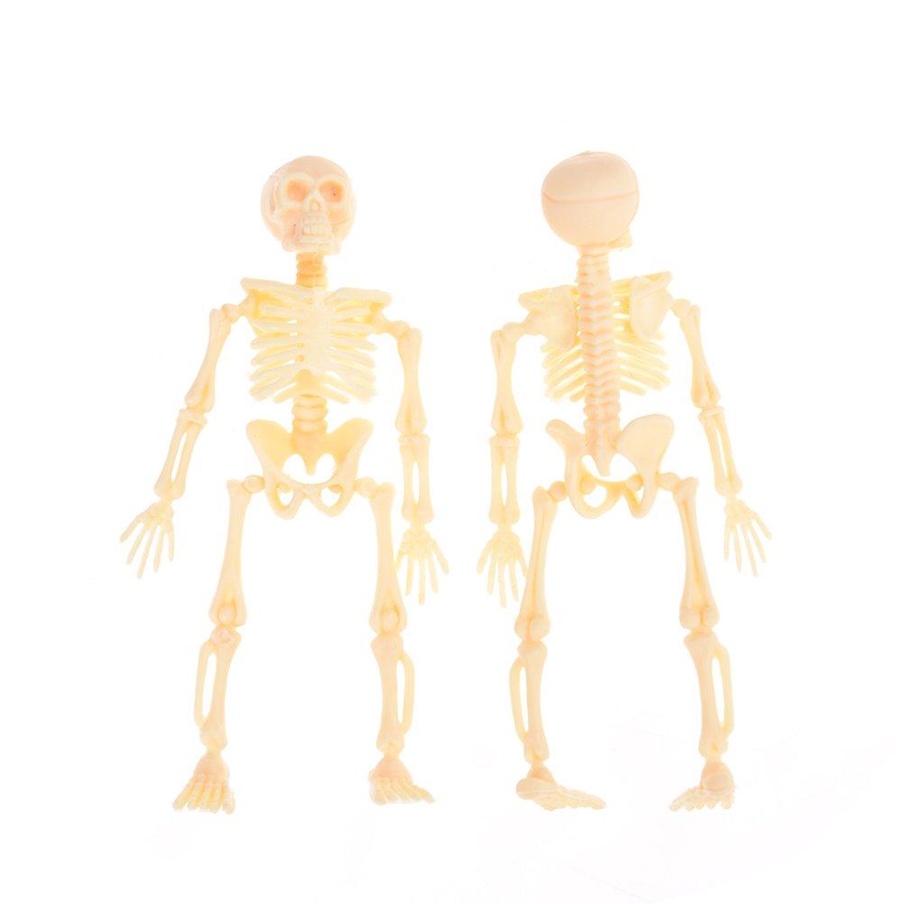 Autumn Water Halloween Movable Mr. Bones Skeleton Human Model Skull Full Body Mini Figure Toy Skeleton 11.5X5.5X2.5CM