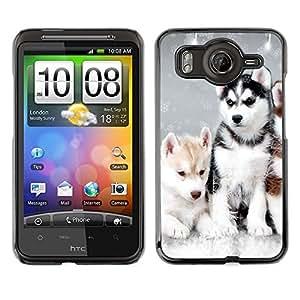 Vortex Accessory Carcasa Protectora Para HTC DESIRE HD - Husky Winter Dog Puppy Canine -