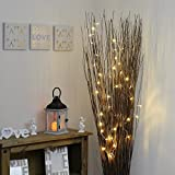 40 LED Fairy String Lights on 3.2m Clear Cable by Festive Lights (Warm White) Bild 2