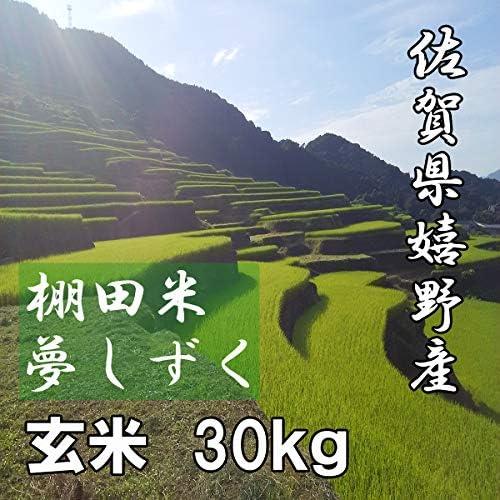 佐賀県産 棚田米 夢しずく 玄米 30kg(10kg×3) 令和元年産