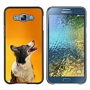 Border collie de Orange inteligente perro canina- Metal de aluminio y de plástico duro Caja del teléfono - Negro - Samsung Galaxy E7 / SM-E700