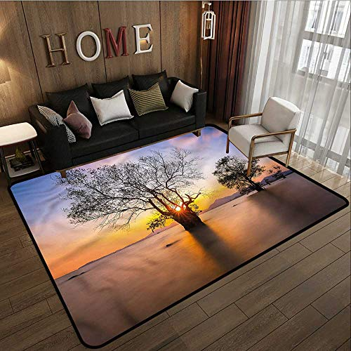- Kids Rug Coastal Autumn Trees View Habitat Ideal Gift for Children 5'10