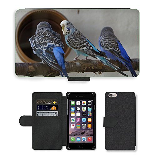 Hot Style Cell Phone Card Slot PU Leather Wallet Case // M00130189 Budgerigars Parakeets Pets // Apple iPhone 6 PLUS 5.5""
