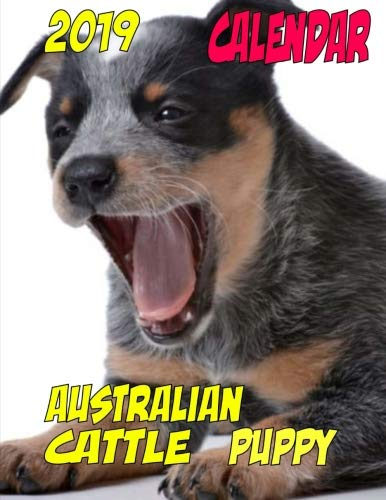 2019 Calendar Australian Cattle Puppy: Personal contacts, password log, notes, to do list and more ()