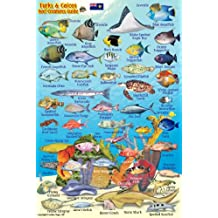 "Turks & Caicos Coral Reef Creatures Guide Franko Maps Laminated Fish Card 4""x6"""