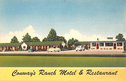 Williamston North Carolina Conways Ranch Motel Antique Postcard - North In Conway Stores