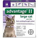 advantage multi for cats - Advantage II Flea Control Large Cat (for Cats over 9 lbs.) - 2 Month
