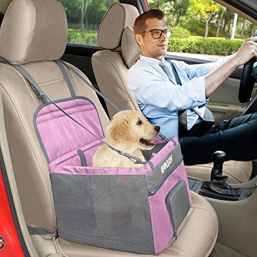 Your dog will enjoy their next car ride