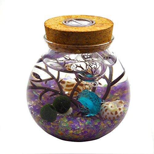 OMEM Aquarium Kits-Living Moss Ball,Valentine Gift Sea Fan, Gravel, Cone Seashell, Work Desk Decoration (Multi) -