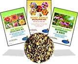 buy Wildflower Seeds Bulk Perennial Packets - 8 BONUS Gardening eBooks - 87,000 Open-Pollinated, Non-GMO, No Fillers, Annual, Flower Seed For Fall Planting, Bees, Humming Birds, Butterflies, Pollinators now, new 2019-2018 bestseller, review and Photo, best price $15.99