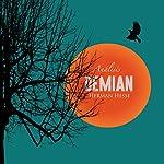 Análisis: Demian - Hernan Hesse [Analysis: Demian – Hermann Hesse] |  Online Studio Productions