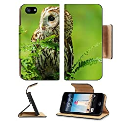 Owl Birds Predator Branches Nature Macro Apple iPhone 5 / 5S Flip Cover Case with Card Holder