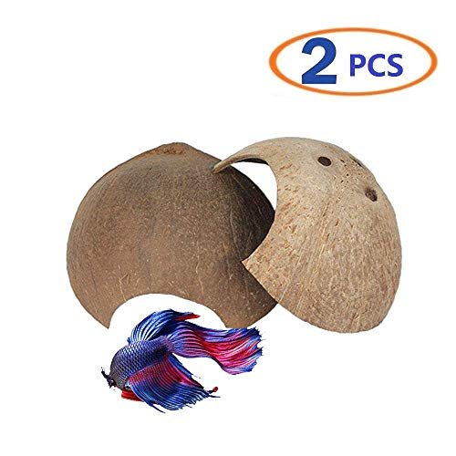 Reptile Cave Betta Cave Safe Hideout Natural Spacious Coco Tunnel Maximum Privacy Ideal breeding Ground for Fish Spiders Reptile Lizards Hamster Small Animal 2PCS