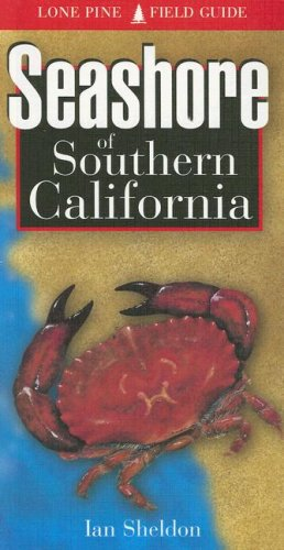 Seashore Of Southern California (Lone Pine Field Guides)