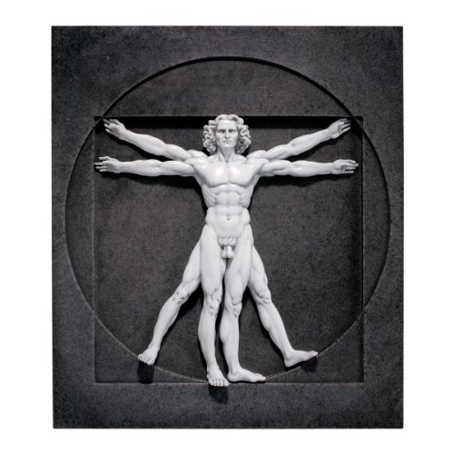 Design Toscano Vitruvian Man Wall Sculpture