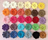 "PEPPERLONELY Brand, 20pc Rainbow Collection Eight Petals 2"" Crocheted Flowers Appliques"