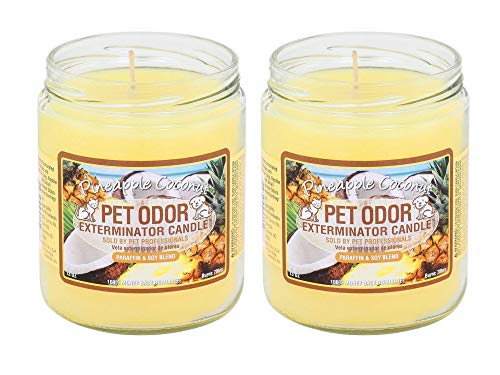 Specialty Pet Products Pet Odor Exterminator Jar Candle, 13 Ounce Pineapple & Coconut Bundle, 2-Pack ()