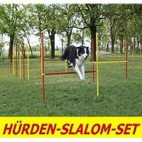 AGILITY exercices d'obstacles/Piquets de Slalom dans rouge/jaune Prime Day la une de