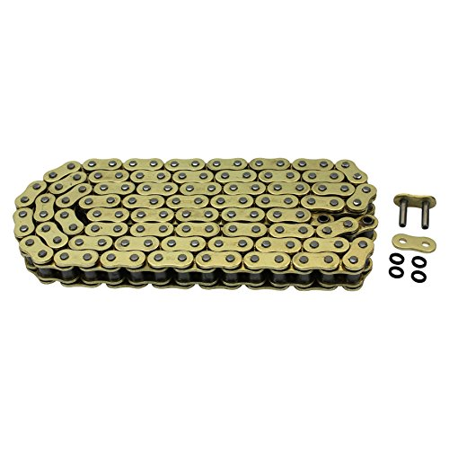 Sportster Chain Conversion - 4