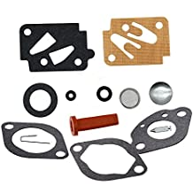 Karbay Carburetor Rebuild Kit for Eska Sears Ted Williams Tecumseh Outboard Motor 1961-1987 Carb Repair