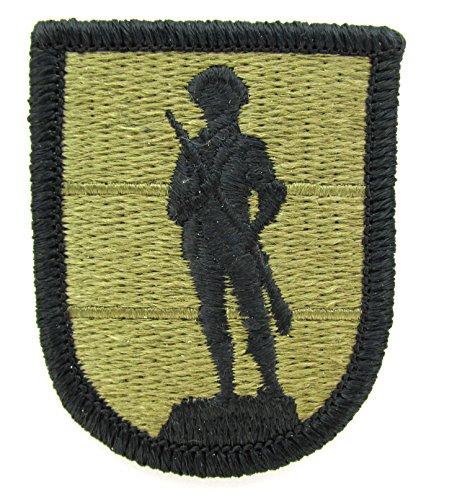 (Army National Guard School TASS OCP Patch - Scorpion W2)