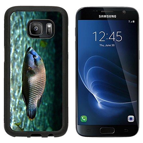 MSD Premium Samsung Galaxy S7 Aluminum Backplate Bumper Snap Case Big tropical...