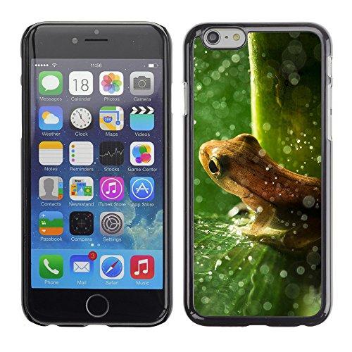 "Premio Sottile Slim Cassa Custodia Case Cover Shell // V00003311 forêt grenouille pluie // Apple iPhone 6 6S 6G PLUS 5.5"""