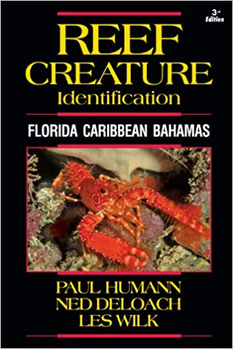 Reef Creature Identification: Florida, Caribbean, and Bahamas