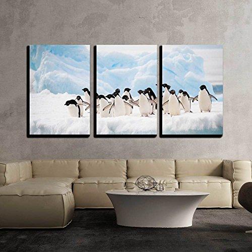 Adelie Penguins Colony on the Iceberg Antarctica x3 Panels