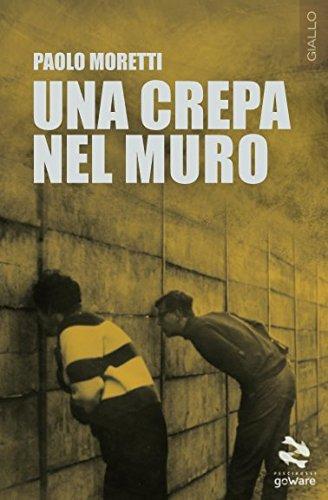 una-crepa-nel-muro-italian-edition