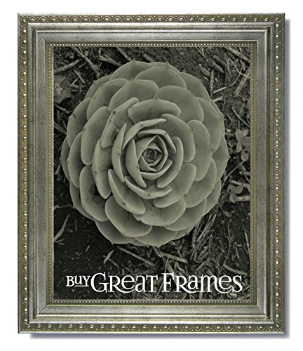 (One 16x20 Ornate Heritage Silver Picture Frame and Clear Glass)