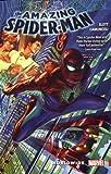 Amazing Spider-Man: Worldwide Vol. 1 (The Amazing Spider-Man: Worldwide)