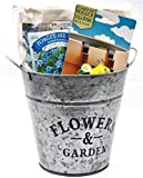 Flower Planter Bundle with Hanging Pot Decoration, Potting Soil, Forget Me Not Flower Seeds