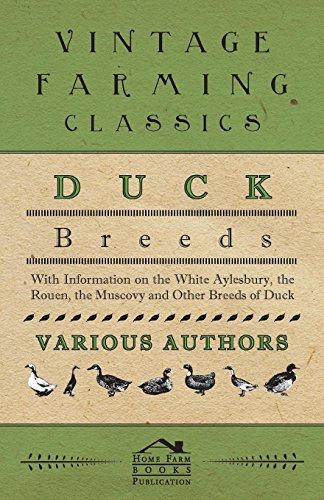 Aylesbury Ducks - Duck Breeds - With Information on the White Aylesbury, the Rouen, the Muscovy and Other Breeds of Duck