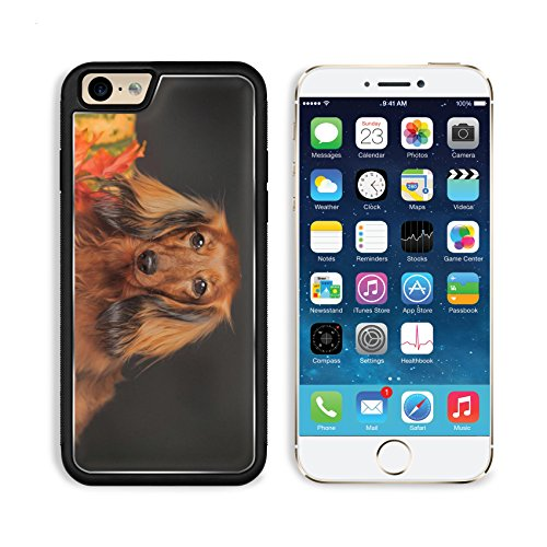 Apple iPhone 6 6S Aluminum Case long haired dachshund in the autumn IMAGE 23884274 by MSD Customized Premium Deluxe Pu Leather generation Accessories HD Wifi Luxury Protector