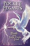 Pocket Pegasus, Susan Stafford, 189437732X