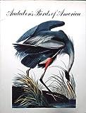 Audubon's Birds of America, George Dock, 0810920611