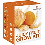 Juicy Fruit Seed Growing Kit Gift Box - 5 Fresh Flavoursome Fruit to Grow; Strawberry, Melon, Rhubarb, Physalis & Tomato Seeds by Thompson & Morgan