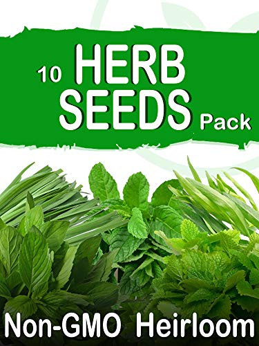 SavvyGrow Heirloom Herb Seeds (10 Type) - Survival Garden Seeds for Planting Include Basil, Mint, Cilantro, Dill - Open Pollinated, 85% Plus Germination Rate, Non-GMO & Source in USA Plant Herbs(Herb)