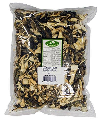 Review Mushroom House Dried Mushroom