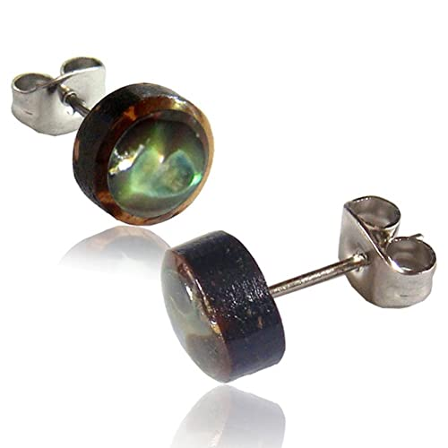ed91938a1df177 Amazon.com  Earth Accessories Organic Shell Stud Earrings surrounded ...
