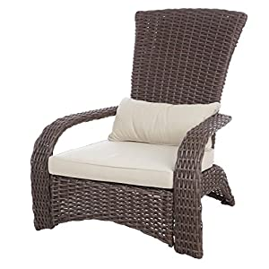 51QoOVKpv1L._SS300_ Adirondack Chairs For Sale