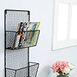 3-Tier Black Wall Mounted Metal Chicken Wire Mesh