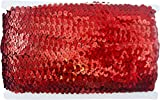 "Stretch Sequin Trim Roll - 1"" Wide 11yd Length"