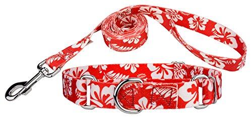 Country Brook Design Red Hawaiian Martingale Dog Collar & Leash - Small